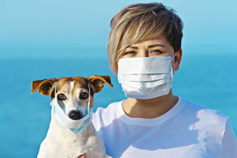 animali e coronavirus